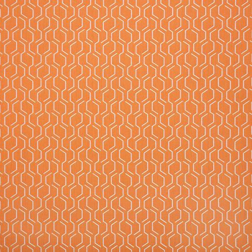 Adaption-Apricot 69010-0003