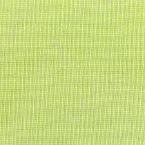 Canvas-Parrot 5405-0000