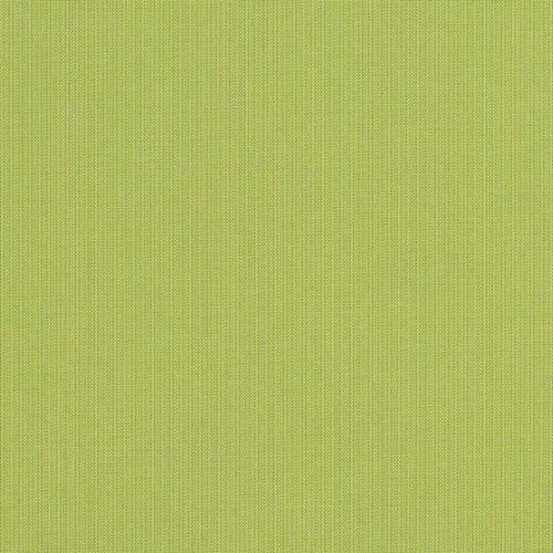 Spectrum-Kiwi 48023-0000