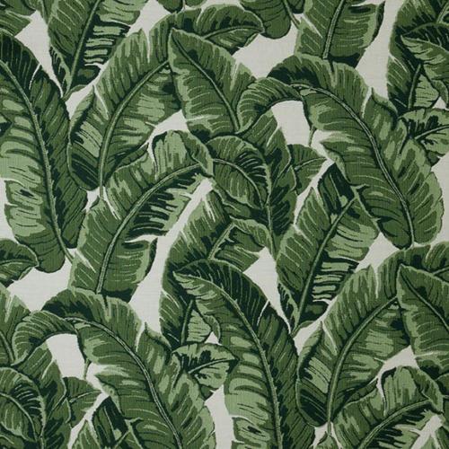Tropics-Jungle 145214-0000